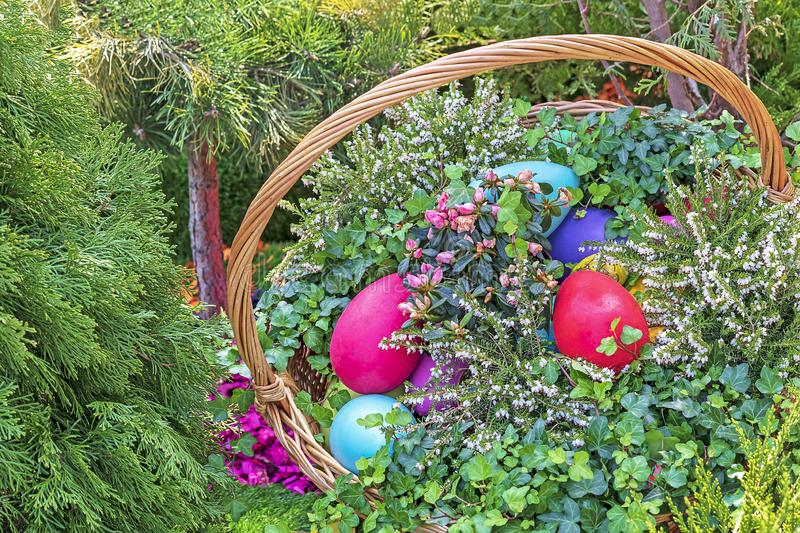 Colorful Easter eggs in a wicker basket on a natural background stock photo