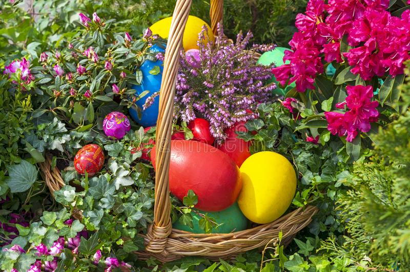 Colorful Easter eggs in a wicker basket on a natural background stock photos