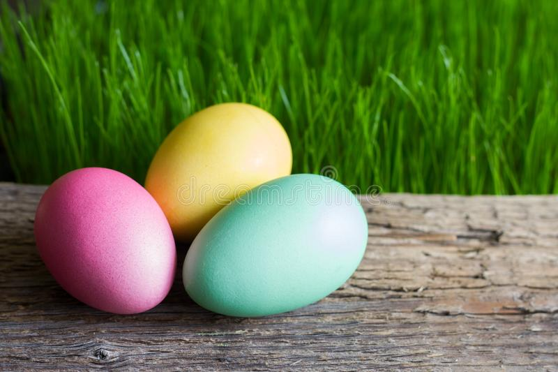Colorful easter eggs on wooden plank and green grass. Closeup stock photo