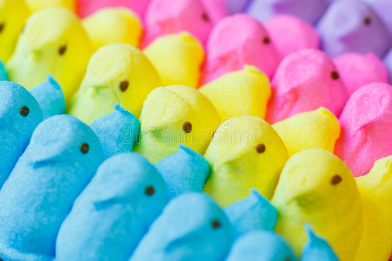 Colorful Easter Marshmallow Treats. Lined up in rows