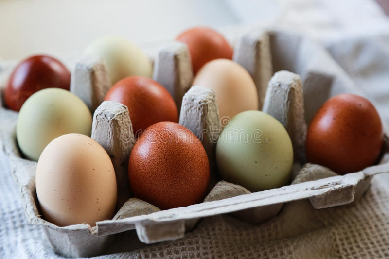 Colorful Eggs. Several naturally colorful organic eggs in a small carton stock photography