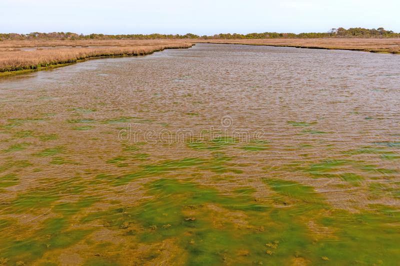 Colorful Estuary on a Barrier Island. In Assateague Island in Maryland stock images