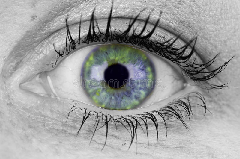 Download Colorful Eye Royalty Free Stock Photos - Image: 13555708