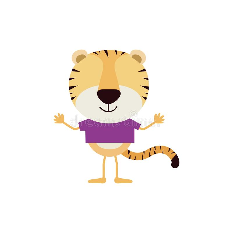 Colorful faceless caricature of tiger with t-shirt vector illustration