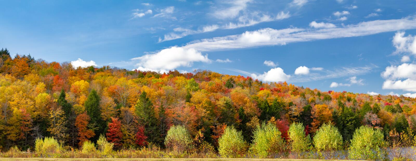Colorful fall forest foliage in panoramic New England landscape. Colorful fall forest foliage in panoramic New England autumn landscape scene royalty free stock photo