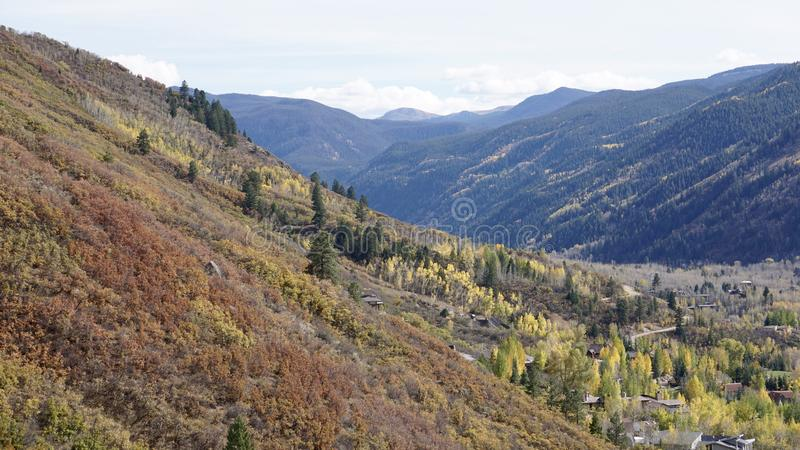 A colorful fall on the mountain side in Aspen royalty free stock photography
