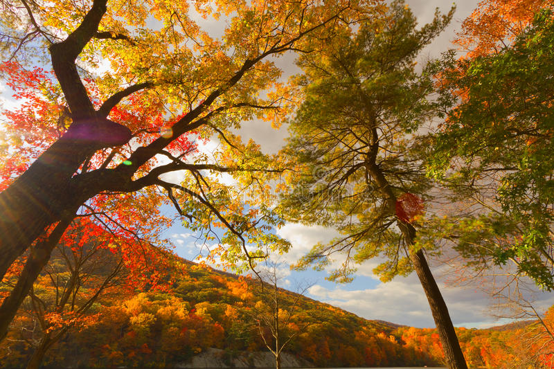 Colorful fall scenery landscapes. royalty free stock photography