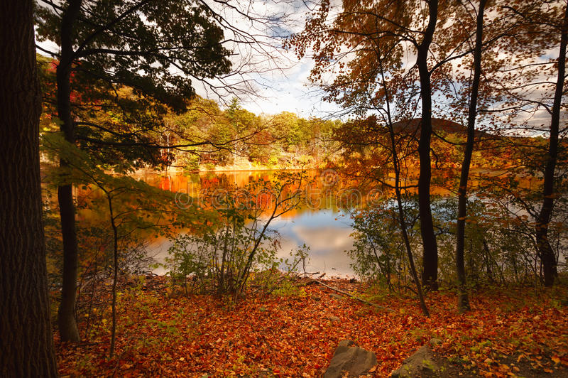 Colorful fall scenery landscapes. stock images