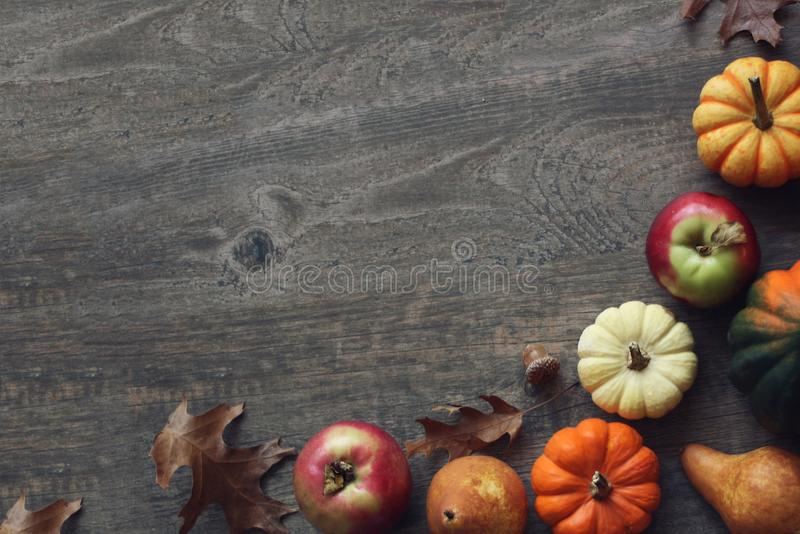 Colorful Fall Thanksgiving Harvest Background with Apples, Pumpkins, Pear Fruit, Leaves, Acorn Squash and Nut Border Over Dark Woo stock image