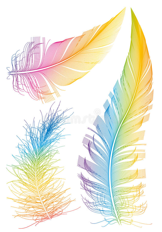 Free Colorful Feathers Royalty Free Stock Images - 20084619
