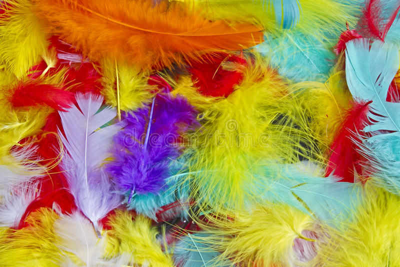 Colorful feathers. Background image of many different colored down feathers stock images