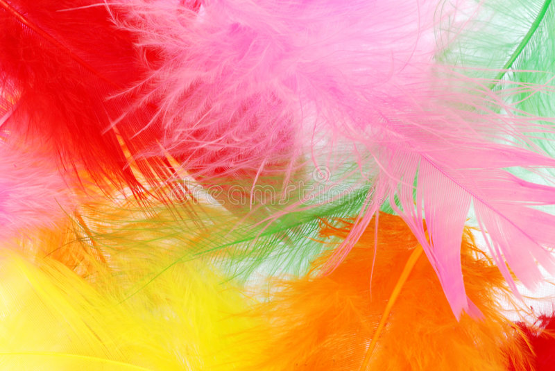 Colorful feathers. Beautiful soft feathers of various colors create merry background stock photography