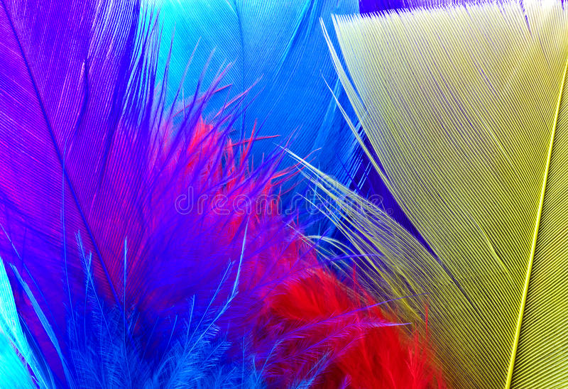Download Colorful Feathers Background Stock Photo - Image: 27373338