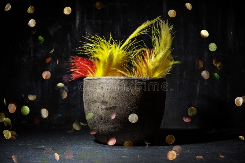 Feathers in vase still life with magic lights royalty free stock photo