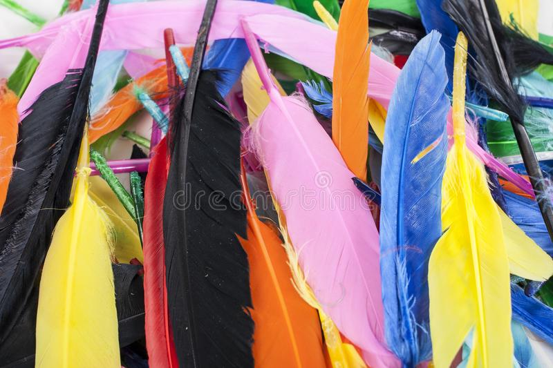 Colorful feathers. Parrot colors duck feather texture. royalty free stock photo