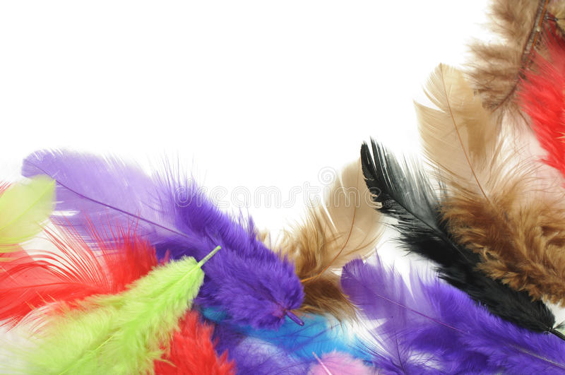 Download Colorful feathers stock image. Image of border, background - 29927617