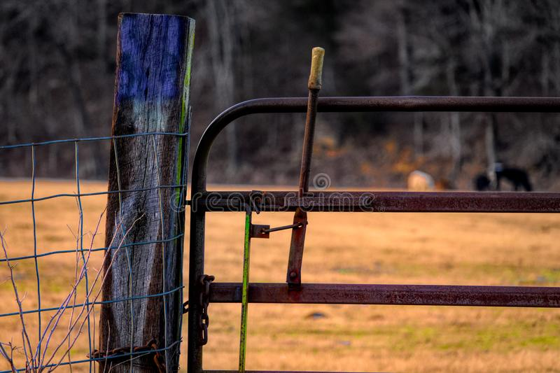 Colorful Fence Post stock photos