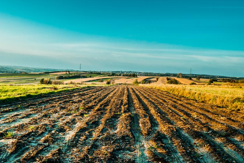 Colorful fields in the countryside stock photography