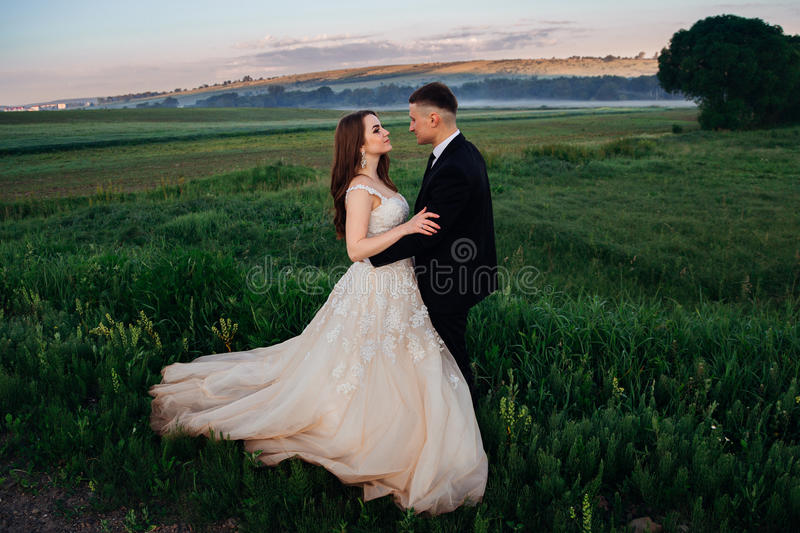 Colorful fields spread around the chic wedding couple. Hugging on the grass royalty free stock photos