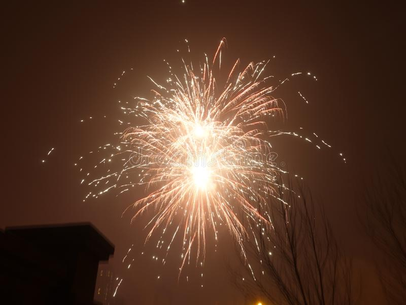 Colorful firework background at night stock photo