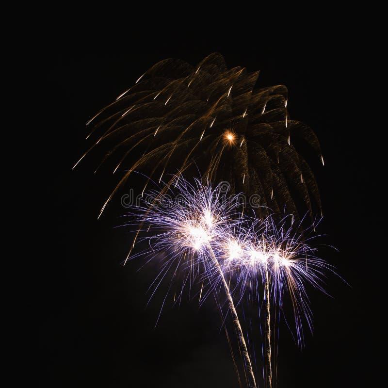 Colorful fireworks expoding. royalty free stock image