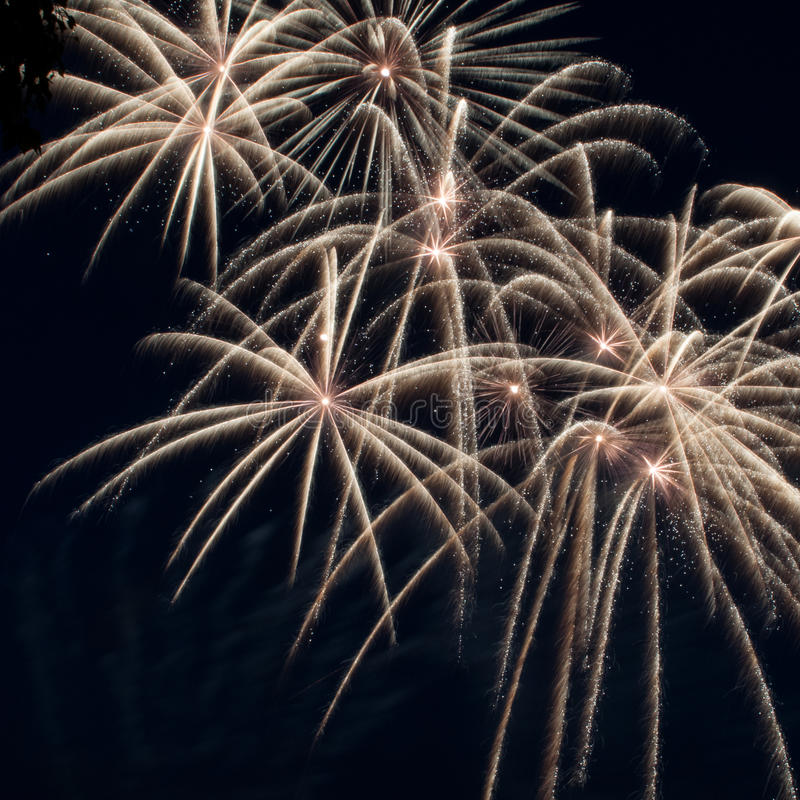 Colorful Fireworks Over Dark Sky Stock Images