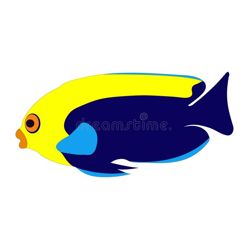 colorful flameback angelfish clip art stock vector illustration of rh dreamstime com  colorful angelfish clipart