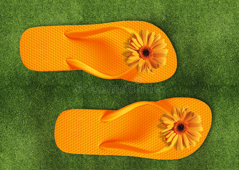 Download Colorful Flip Flops On Green Grass Stock Illustration - Illustration: 21549718
