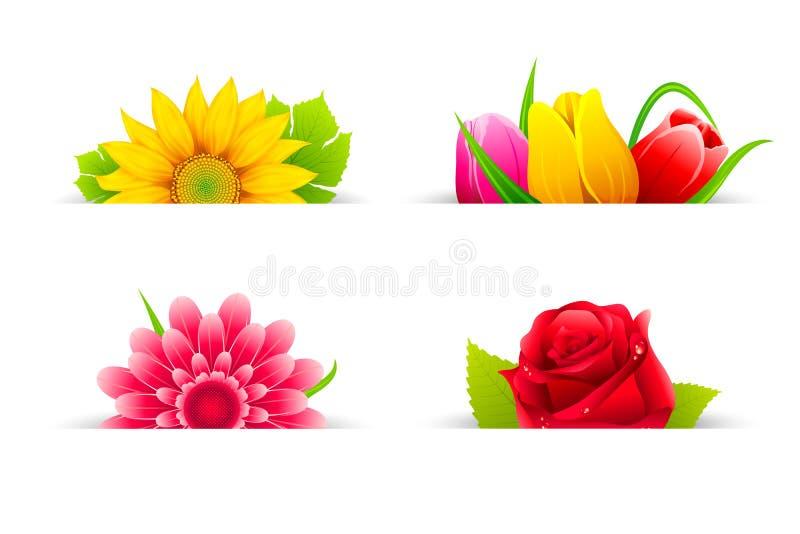Download Colorful Flower stock vector. Illustration of elegant - 22812794