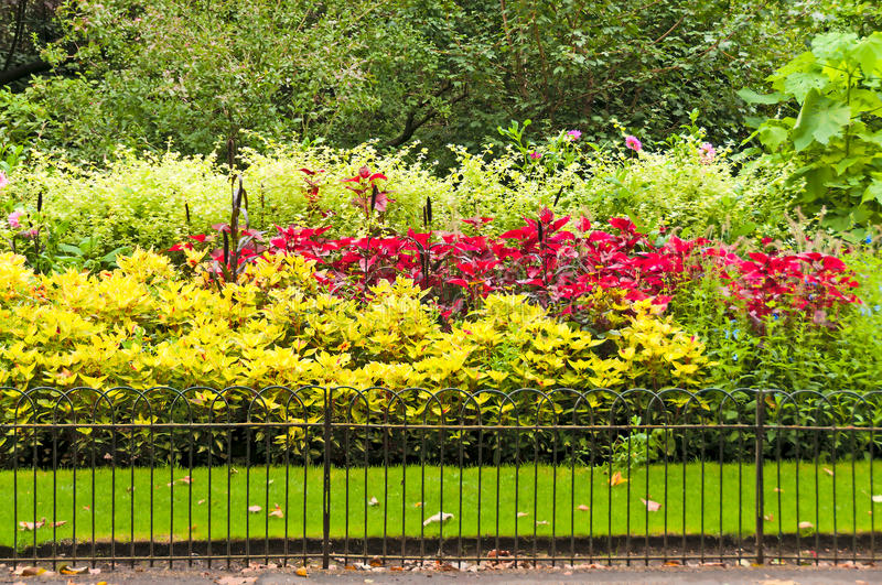 Colorful flower beds in park