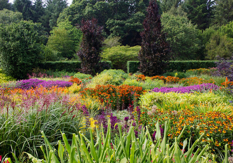 Colorful Flower Garden. View of a colorful flower garden with many varieties of flowers in full bloom stock photo