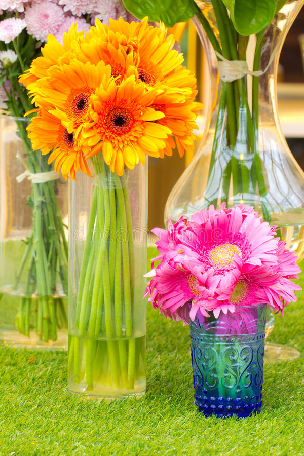 Colorful flower in vase stock image. Image of daisy, petal ...