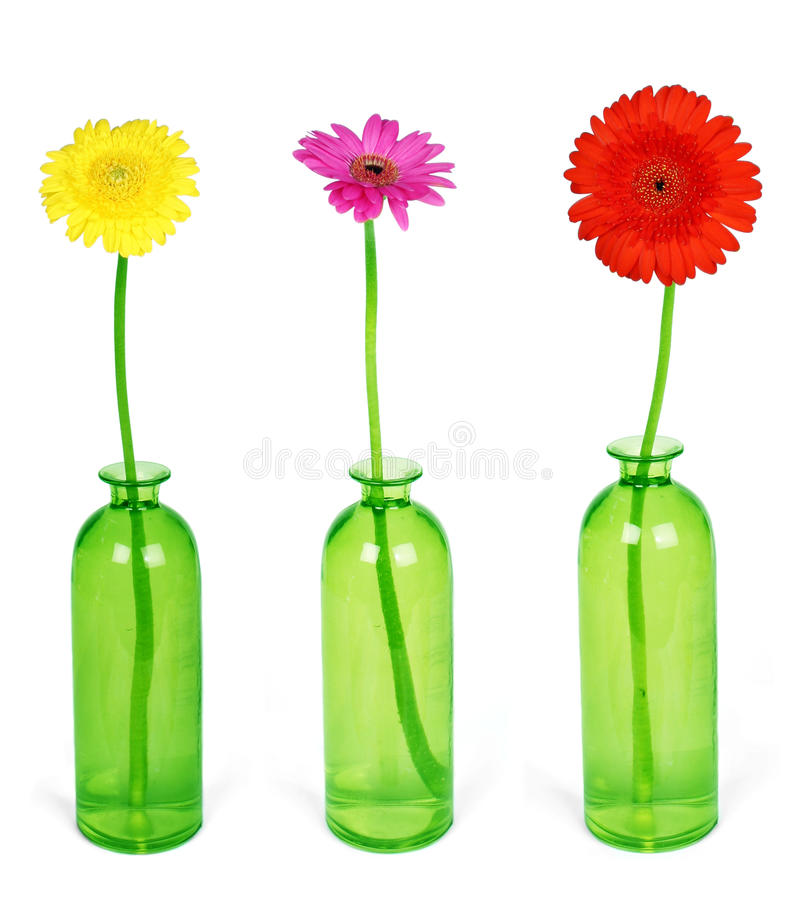 Download Colorful flowers stock photo. Image of gerbera, flower - 17224424