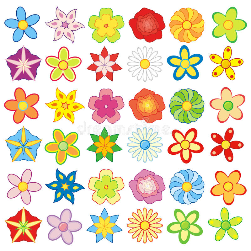 Colorful flowers 36 pieces pack vector illustration