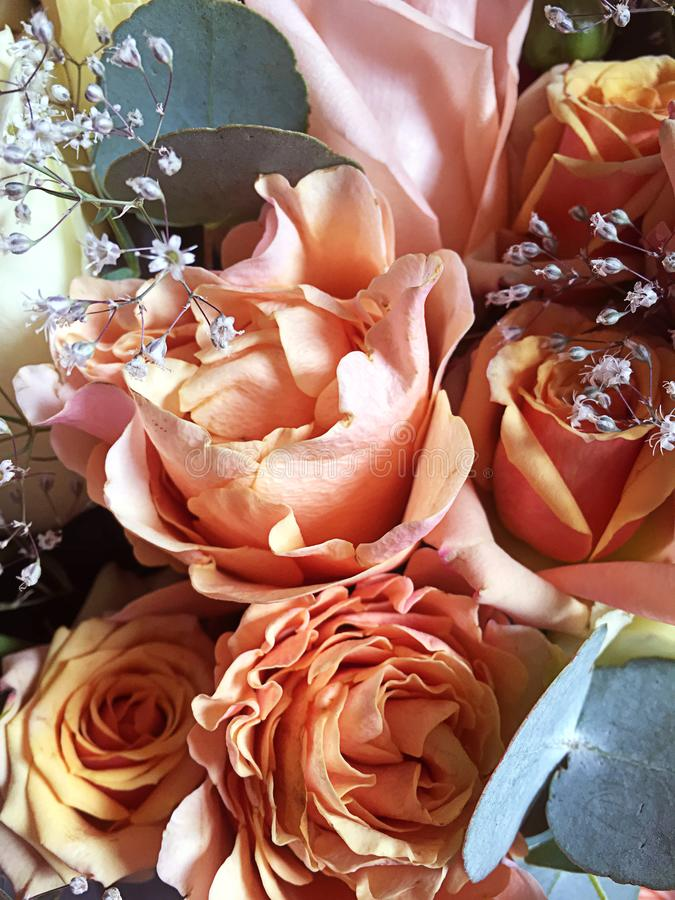 Colorful flowers bouquet isolated. Mix flowers. Beautiful summer bouquet. Concept of a flower shop. Orange roses, pink roses ,. Colorful flowers bouquet isolated stock images