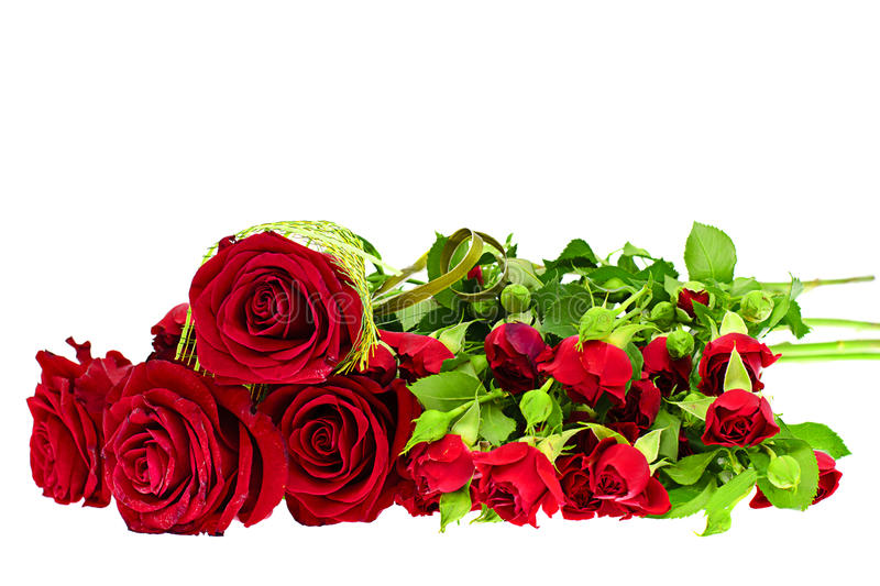 Colorful Flowers Bouquet Isolated on White. Backgroundr stock photo