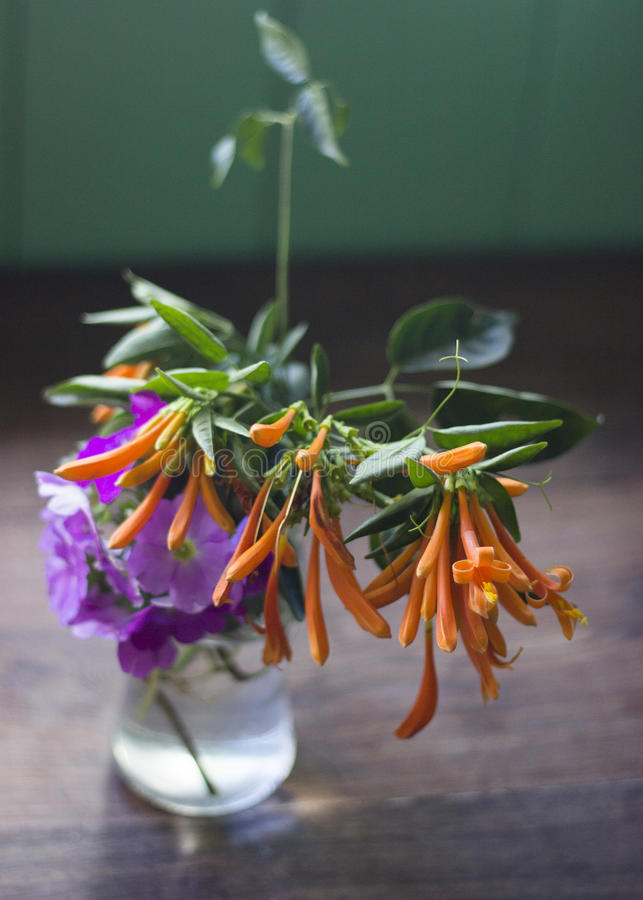 Colorful flowers inside a glass jar. Home Kitchen royalty free stock photo