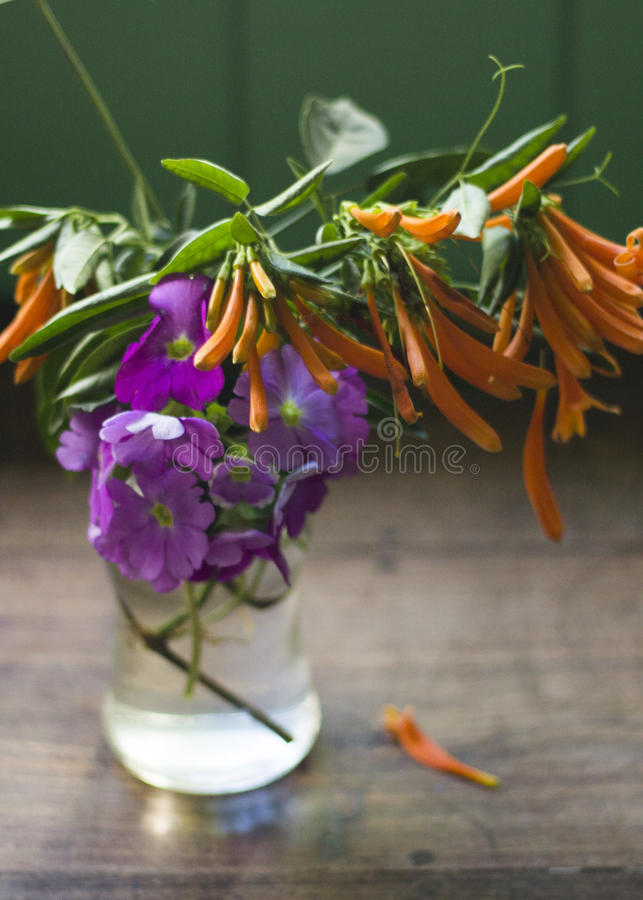 Colorful flowers inside a glass jar. Home Kitchen royalty free stock image