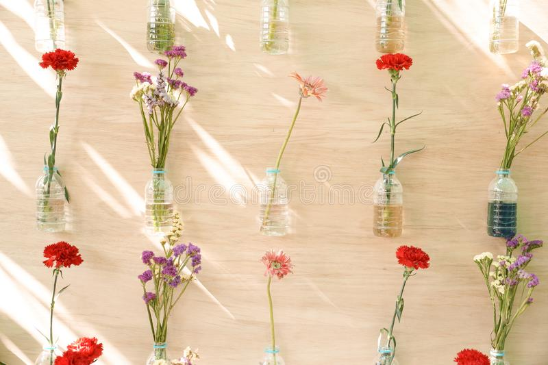 Flowers in plastic bottles hung on wooden wall royalty free stock photo