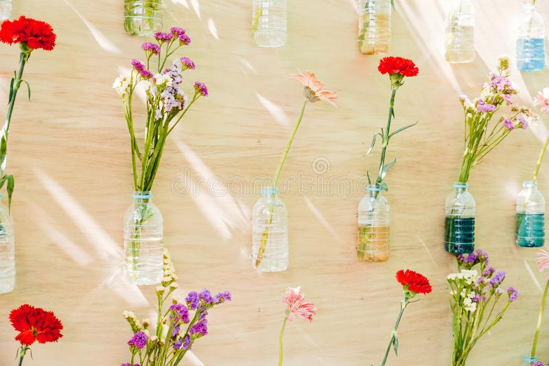 Flowers in plastic bottles hung on wooden wall stock image