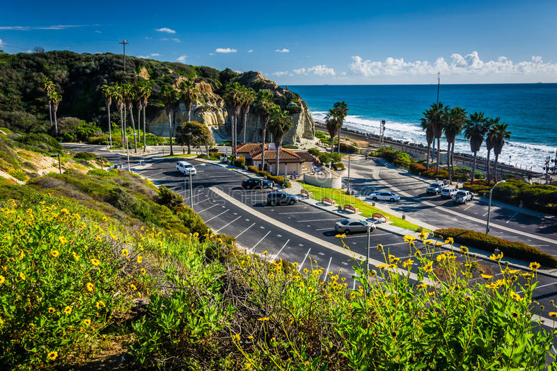 Colorful flowers and view of San Clemente State Beach royalty free stock images
