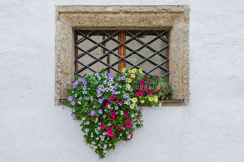 Colorful flowers on window exterior of old european house royalty free stock photography