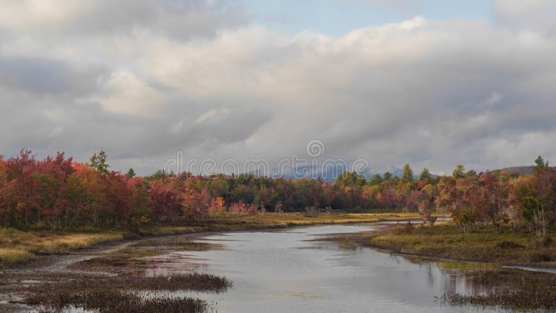 Colorful Foliage Inlet royalty free stock photography