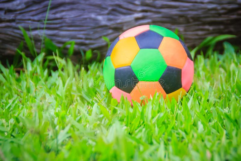 Colorful football on playground with green grass in the backyard for children. Multicolor soccer ball on green grass playground. Colorful football on playground royalty free stock photo