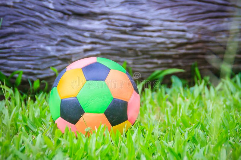 Colorful football on playground with green grass in the backyard for children. Multicolor soccer ball on green grass playground. Colorful football on playground stock images