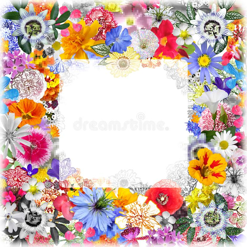 Colorful Frame made with Mixed Flowers stock photography