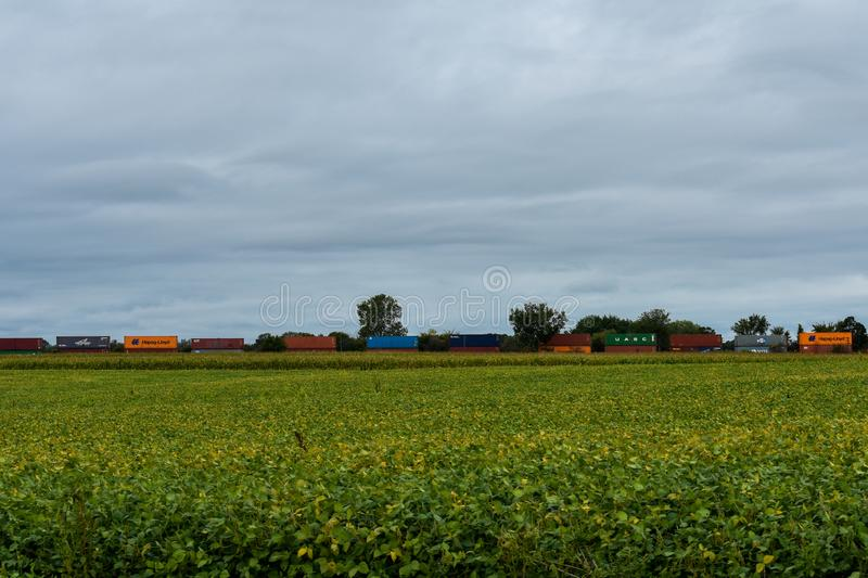 Freight train going through a soybean field stock image