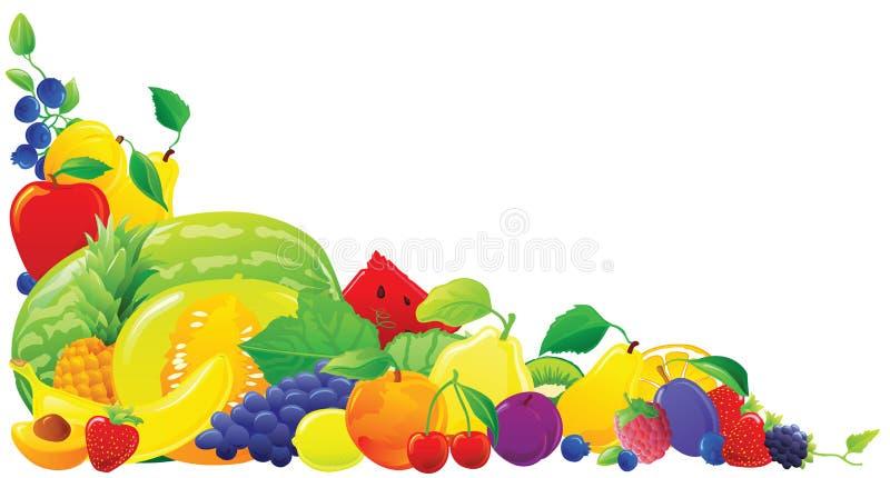 Colorful fruit corner vector illustration