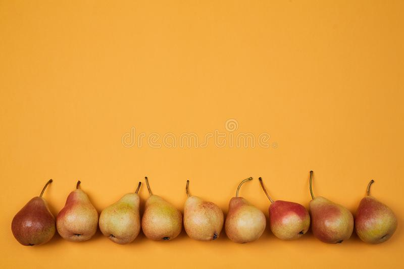 Colorful fruit pattern or background. Composition of ripe juicy pears placed on bright orange background.  royalty free stock images