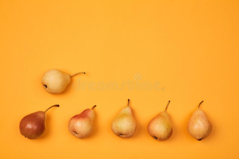Colorful fruit pattern or background. Composition of ripe juicy pears placed on bright orange background.  stock images
